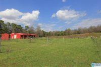 Home for sale: 0 Mudd St., Lincoln, AL 35096