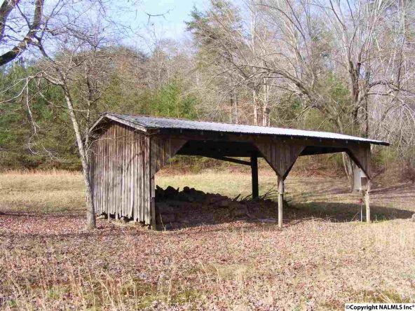 9416 County Rd. 103, Mentone, AL 35984 Photo 32