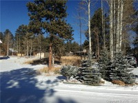 Home for sale: 620 Skyline Dr., Woodland Park, CO 80863