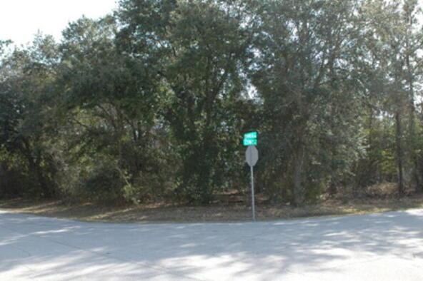 1 Zinc Pl., Palm Coast, FL 32164 Photo 9