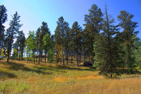 Lot 4, Powder House Trail, Lead, SD 57754 Photo 12