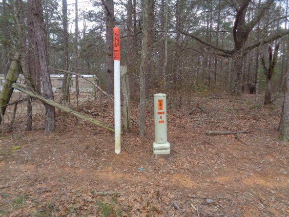 14.34+/- 186 Woodley Spur, Ramer, AL 36069 Photo 26