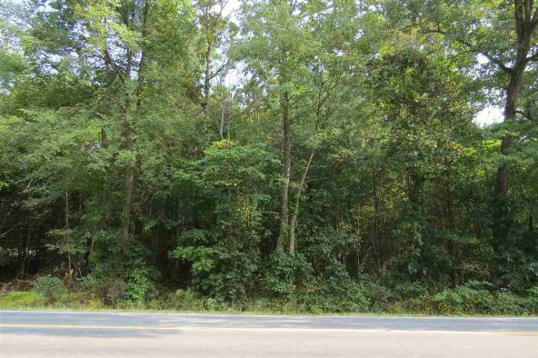 Lot 74 Ladd Springs Rd. S.E., Cleveland, TN 37323 Photo 3