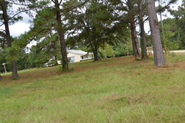 1723 Omussee, Dothan, AL 36303 Photo 7