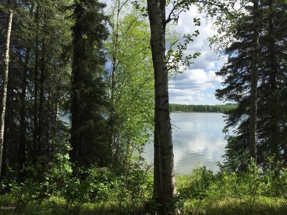 14021 N. Lakeshore Dr., Willow, AK 99688 Photo 11