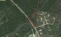 Home for sale: (6.96ac) Hwy. 110 West, Hortense, GA 31543