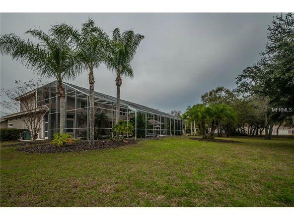 2270 N. Highland Avenue, Tarpon Springs, FL 34688 Photo 19