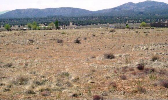 24602 N. Laredo Ln., Paulden, AZ 86334 Photo 8