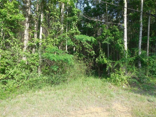 17462 Central Plank Rd., Eclectic, AL 36024 Photo 2