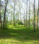 Home for sale: 1515 Roxbury Ct., Davis, IL 61019