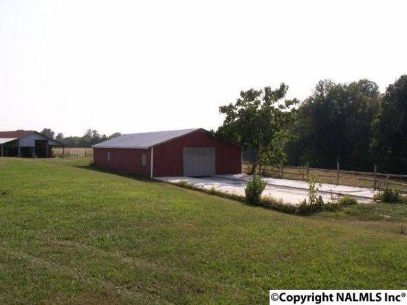 3372 County Rd. 52, Rogersville, AL 35652 Photo 14