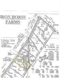 Home for sale: 7 Iron Horse Trl, Lula, GA 30554