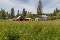 Home for sale: 560 Beers Humbird Rd., Sagle, ID 83860