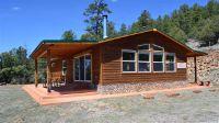 Home for sale: 44 Buena Vista, Rutheron, NM 87551