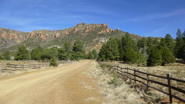 220 W. Zane Grey Cir., Christopher Creek, AZ 85541 Photo 54