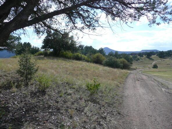 290 N. Navajo Trail, Young, AZ 85554 Photo 11