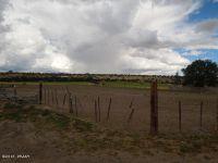 Home for sale: N. Poverty Flat, Eagar, AZ 85925