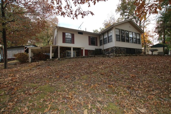 301 County Rd. 173, Crane Hill, AL 35053 Photo 7