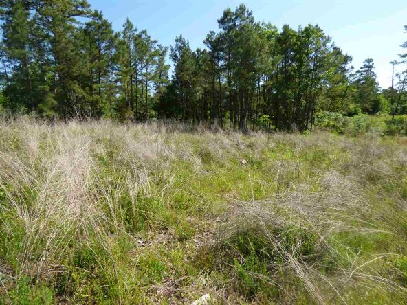 12 Ac Charlie Stover Rd., Royal, AR 71968 Photo 4