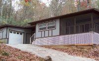 Home for sale: 4470 Chipmunk Dr., Hiawassee, GA 30546