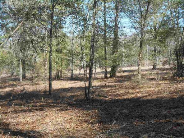 16.9 Acres Private Rd. 1363, Ariton, AL 36311 Photo 8