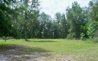 Home for sale: 4500 S.W. 107th Avenue, Jasper, FL 32052
