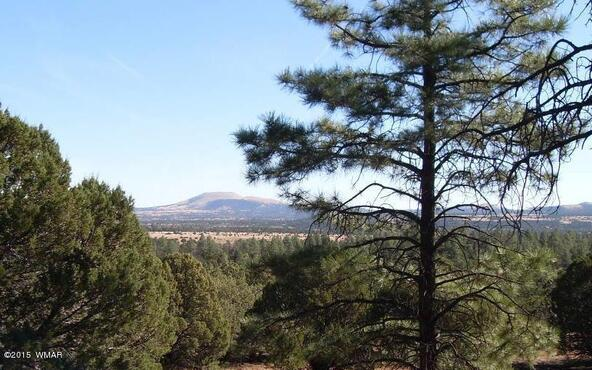 40.88 Acre Of 106-36-034-I, Vernon, AZ 85940 Photo 2