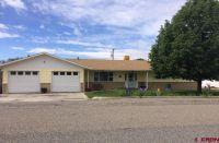 Home for sale: 20210 Plateau Dr., Austin, CO 81410