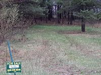 Home for sale: Lot 80 Berkshire Dr., Gladwin, MI 48624