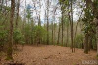 Home for sale: Lot 124 Lonesome Valley Rd., Sapphire, NC 28774