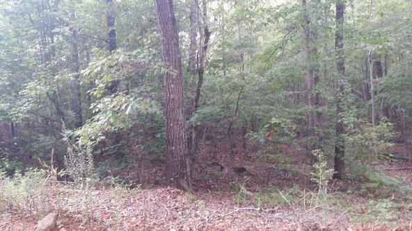 18 Acres, Us Hwy. 431, Roanoke, AL 36274 Photo 2