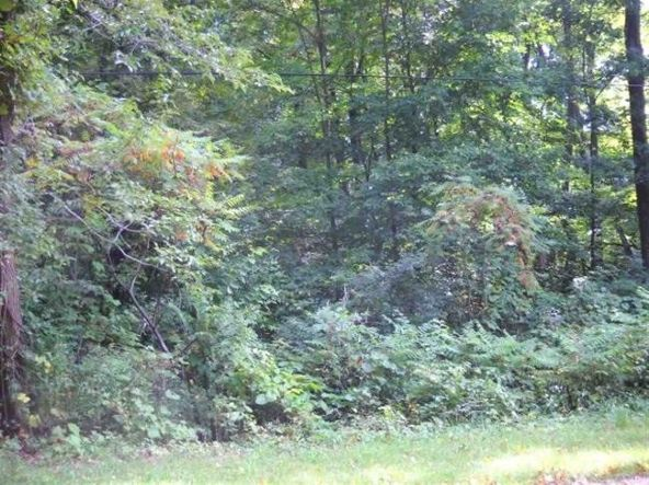 L1 Clingman Rd., Baraboo, WI 53913 Photo 3