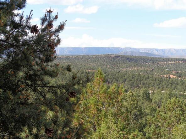 1406 E. Tranquility Point, Payson, AZ 85541 Photo 40