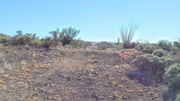 47495 Blk E. Rainwater, Tucson, AZ 85739 Photo 27