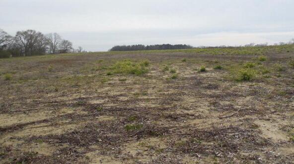 7 Acres Hardy Rd., Rehobeth, AL 36301 Photo 25