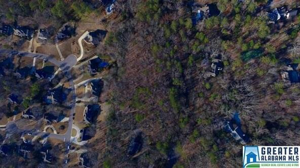 2600 Caldwell Mill Ln., Mountain Brook, AL 35243 Photo 81