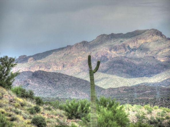 156 S. Piedra Negra Dr., Queen Valley, AZ 85118 Photo 3