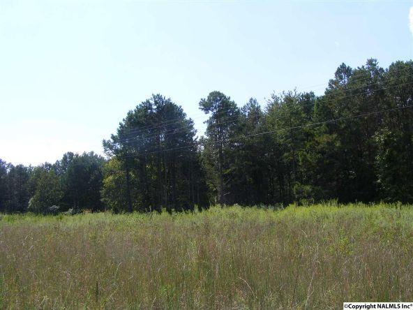 1030 County Rd. 664, Valley Head, AL 35989 Photo 6