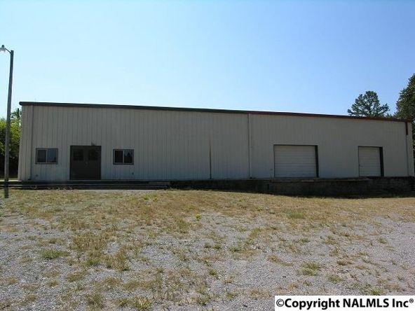 172 County Rd. 299, Trinity, AL 35673 Photo 1