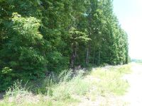 Home for sale: 23ac Off Fort Mitchell Rd., Chase City, VA 23924