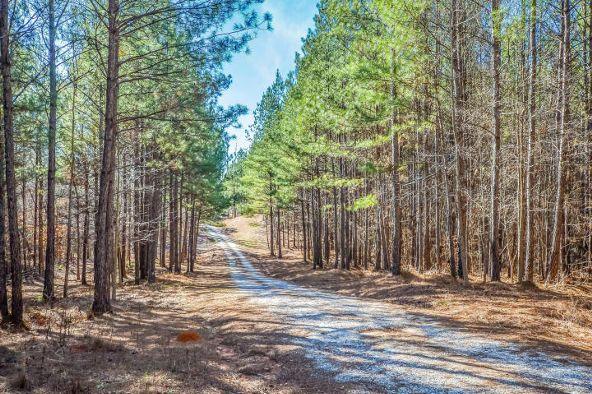 1227 Pine Rd., New Site, AL 36256 Photo 46