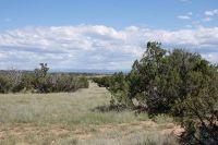 Home for sale: 6511 Arrowhead Dr., Snowflake, AZ 85937