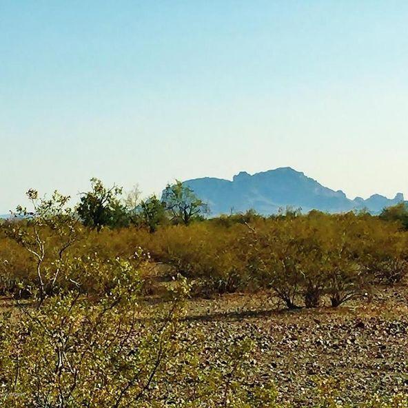 40101 W. Royal Palm Rd., Tonopah, AZ 85354 Photo 6