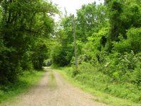 Home for sale: Tbd Mill Creek Rd., Mount Ida, AR 71935
