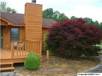 Home for sale: 487 County Rd. 556, Scottsboro, AL 35768