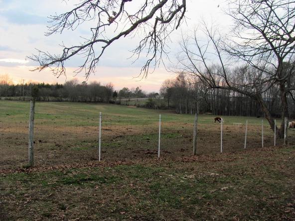 5013 County Rd. 57, Dawson, AL 35963 Photo 16