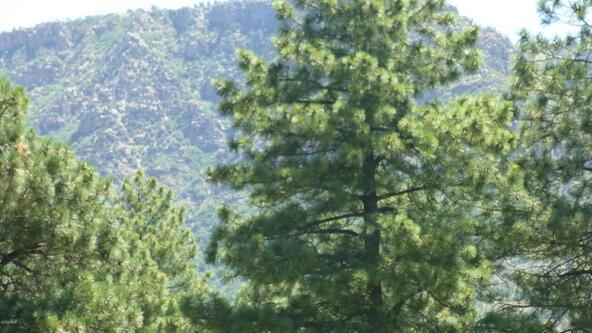 220 W. Zane Grey Cir., Christopher Creek, AZ 85541 Photo 27