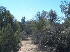 5795 W. Turning Mountain, Prescott, AZ 86305 Photo 3