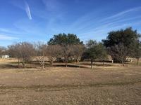 Home for sale: 1300 Shannon Rd. East, Sulphur Springs, TX 75482