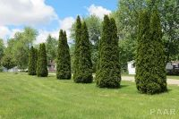 Home for sale: 700 S. Lilac St., Elmwood, IL 61529